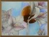 DecoFlowers- Amaryllis